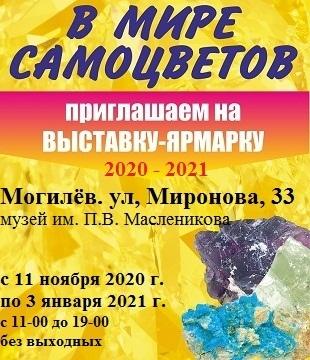 Выставка-ярмарка «В Мире Самоцветов».<p> C 11.11.2020 по 03.01.2020